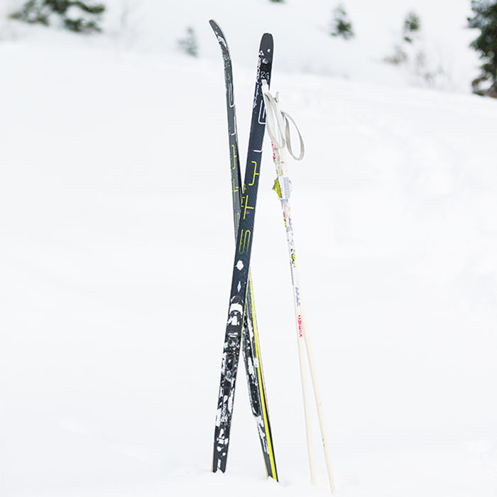 Royal Gorge Cross Country skis and skate skis in the snow.