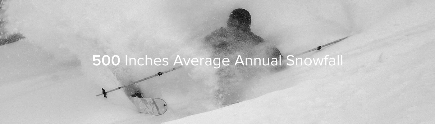 "Black and White image of a skier making a hard left turn in deep powder. ""500 inches Average Annual Snowfall"" is overlaid in text."