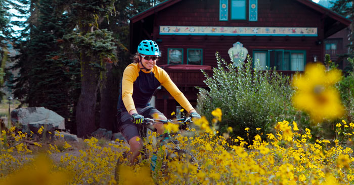 Mountain biking through wildflowers in the village at Sugar Bowl