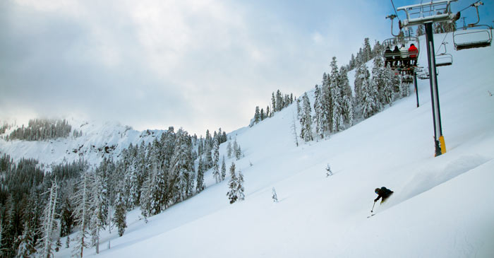 Skier in fresh powder at Sugar Bowl Ski Resort