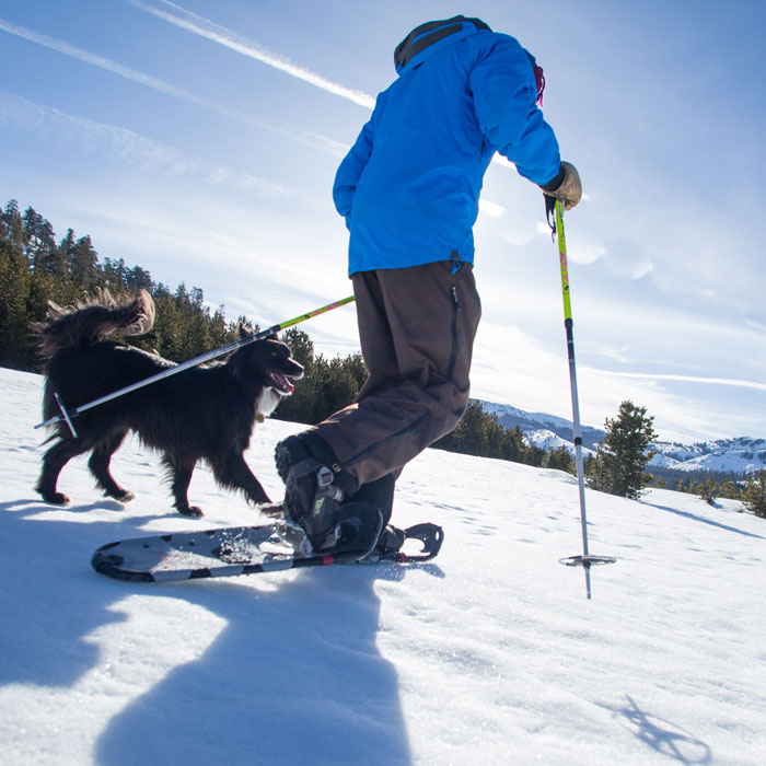 Snowshoe Trails at Royal Gorge on Donner Summit