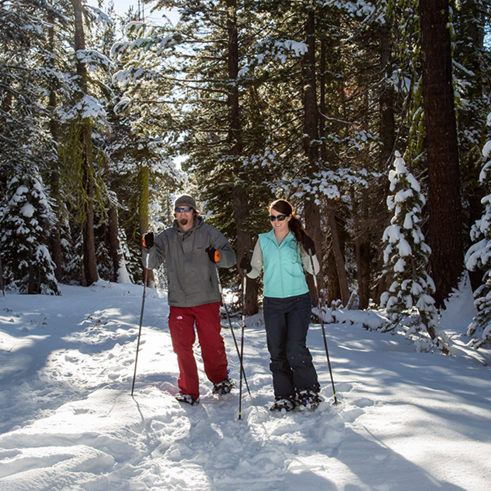 Snowshoeing the Royal Gorge trail network with ticket or pass.