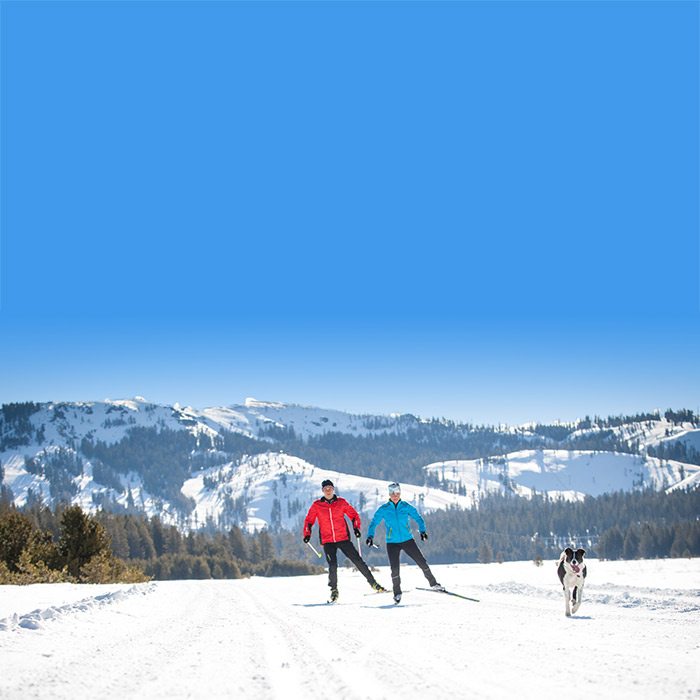 Best dog friendly cross country resort area